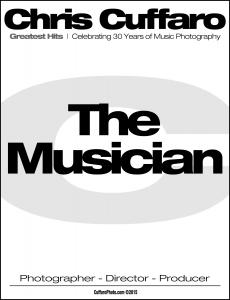 hits_musician